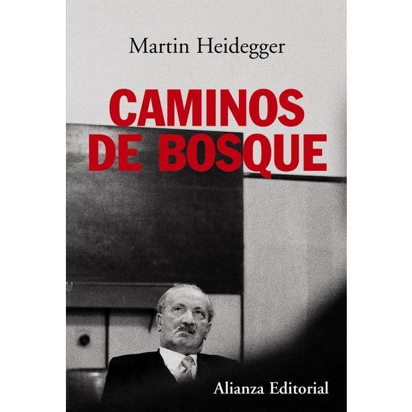 Foto CAMINOS DE BOSQUE