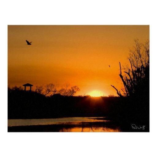 Foto Pájaros sobre el lago 40 acre - pintura de Impasto Posters