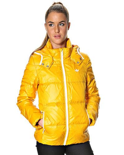 Зимние куртки - Adidas Originals Куртка Adidas Originals Модель: 173067_6 интернет-магазин