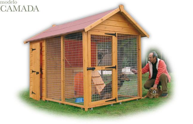Foto Casas Perros Camada Mini Foto 103300