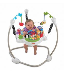 Foto Columpios Fisher-Price Saltador Discover 'n Grow, W9467