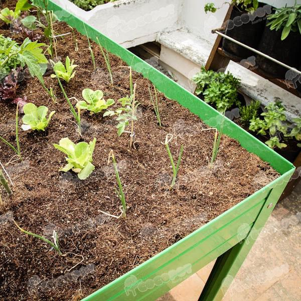 Foto Kit sustrato mesa cultivo 150l. foto 646787
