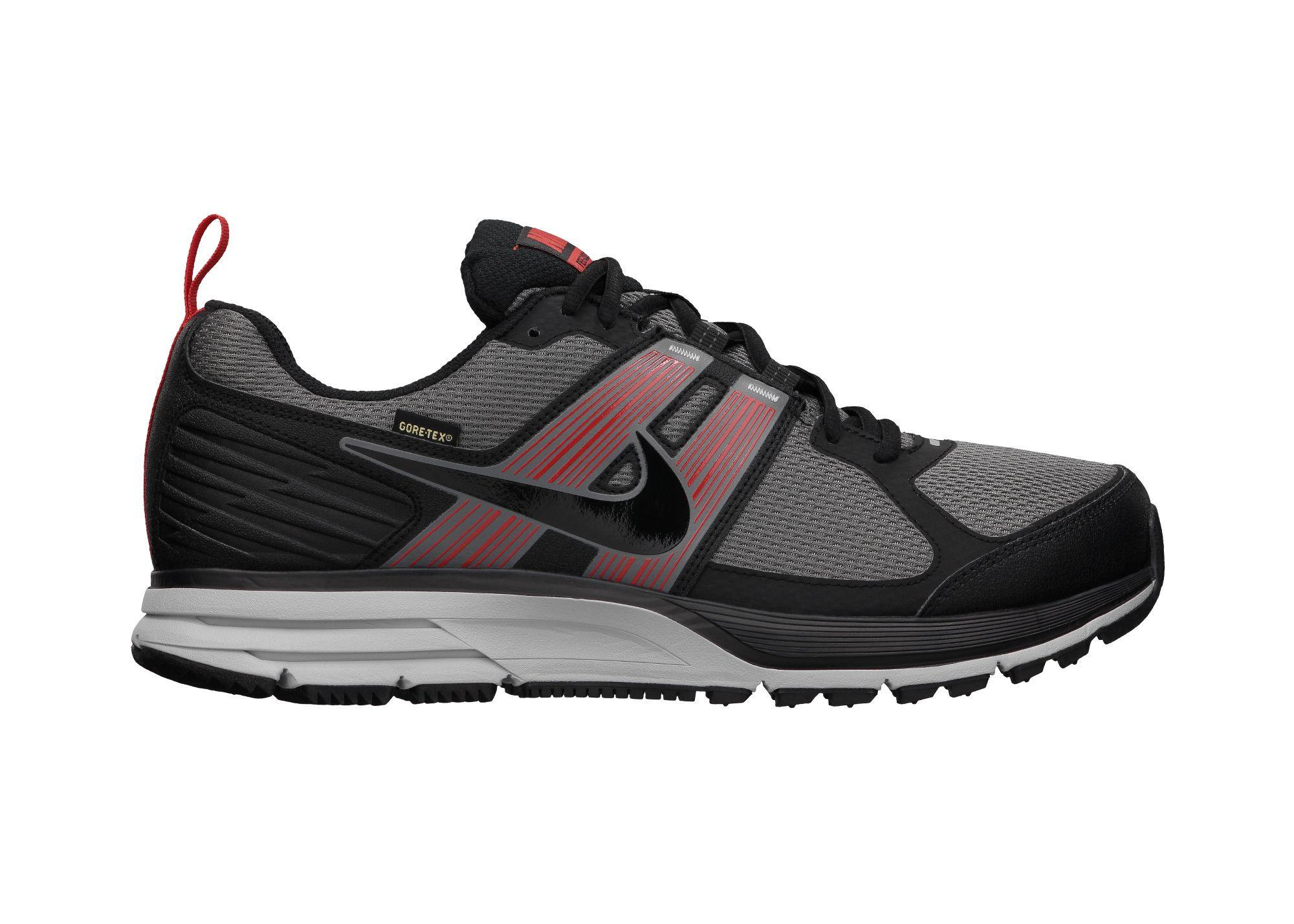 Foto Zapatillas Nike Air Pegasus Plus 29 GTX OI12 UK